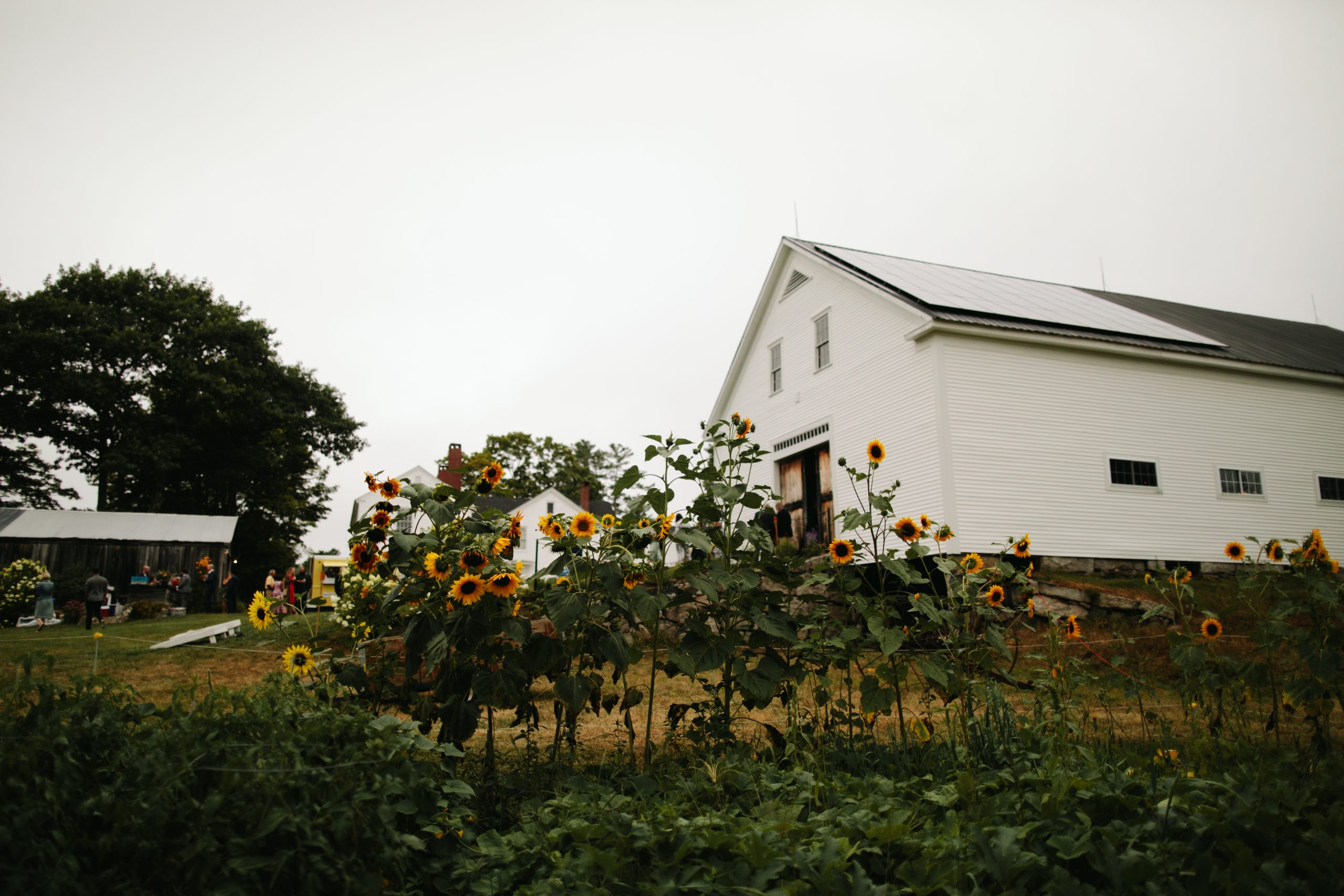 The Best Maine Barn Wedding Venues - Leslie Swan Photography